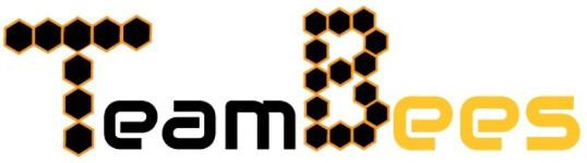 Team Bees ltd. logo